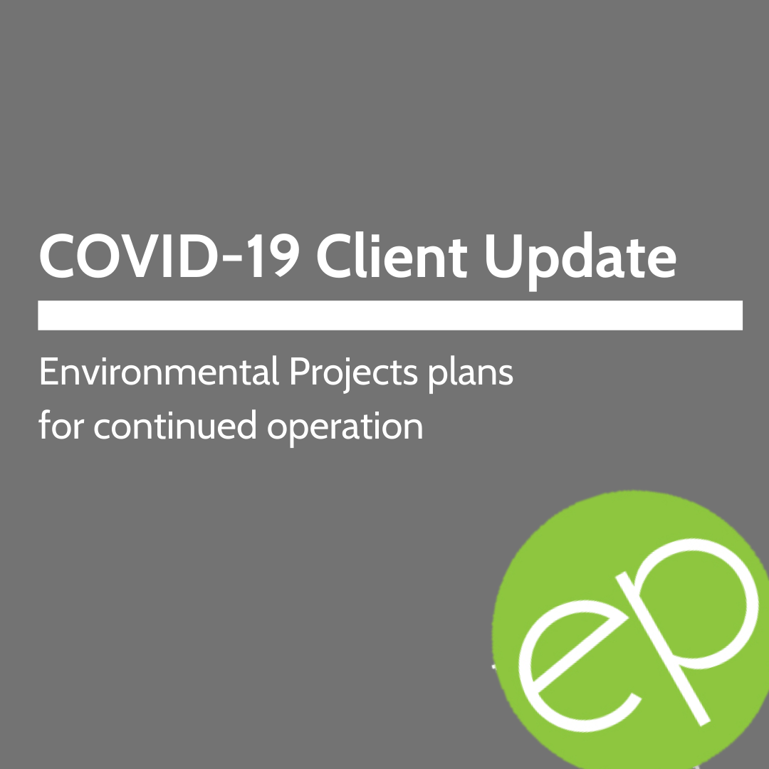 COVID-19 client update title image