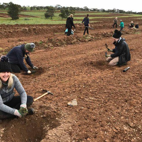 Frahn's Farm Planting Day